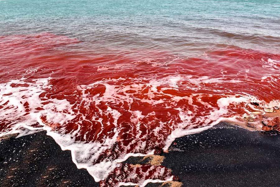 Hormuz Island ,Iran