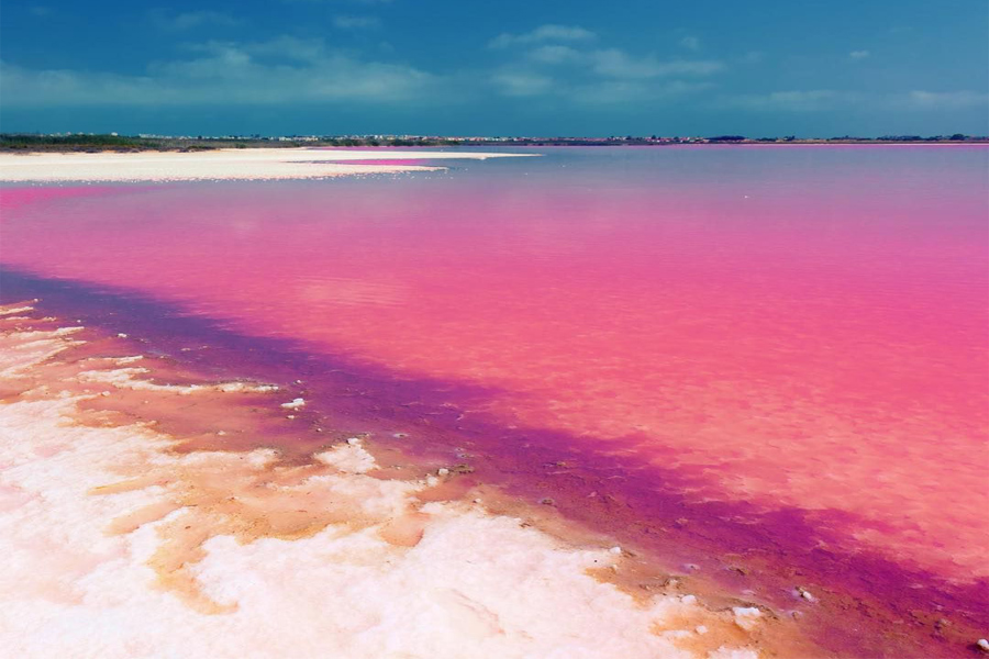Pink Lake , Shiraz Iran